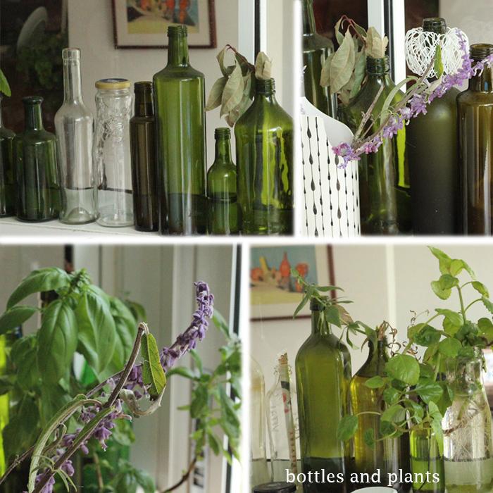 Bottles in the kitchen